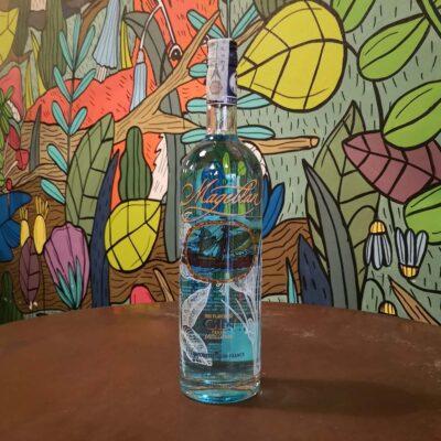 Radici Pavia Magellan gin
