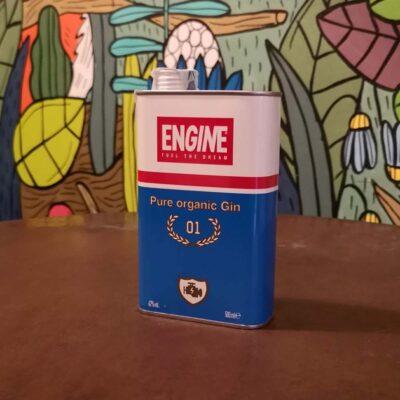 Radici Pavia gin engine
