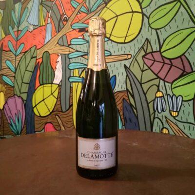Radici Pavia champagne Delamotte